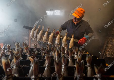 Stock Picture of A proprietor of Arbroath Fisheries Ltd. Campbell Scott, prepares a new batch of smokies at his smokery in Arbroath, Scotland, Britain, 11 November 2020. A Smokie is a hot smoked haddock cooked in a barrel over an open flame. The company use Scottish haddock sourced from the cold waters of the North Sea and still produce it using traditional methods. Having attained PGI Status in 2004 Arbroath Smokies can only be produced within a five mile radius of the town center and enjoy the same status as Parma Ham and Champagne. The methods are strictly monitored to ensure customers are receiving the genuine article.