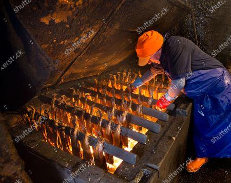 Editorial picture of Scottish haddock in Arbroath Smokies, United Kingdom - 11 Nov 2020