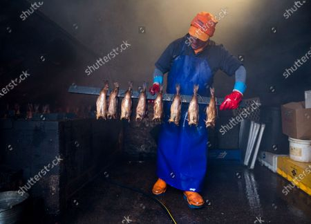 Stock Image of A proprietor of Arbroath Fisheries Ltd. Campbell Scott, removes a new batch of smokies at his smokery in Arbroath, Scotland, Britain, 11 November 2020. A Smokie is a hot smoked haddock cooked in a barrel over an open flame. The company use Scottish haddock sourced from the cold waters of the North Sea and still produce it using traditional methods. Having attained PGI Status in 2004 Arbroath Smokies can only be produced within a five mile radius of the town center and enjoy the same status as Parma Ham and Champagne. The methods are strictly monitored to ensure customers are receiving the genuine article.