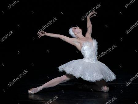 'Swan Lake' Natalia Osipova