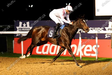 Copinet and James Doyle win the Play Ladbrokes Football Fillies Novice Auction Stakes at Wolverhampton.