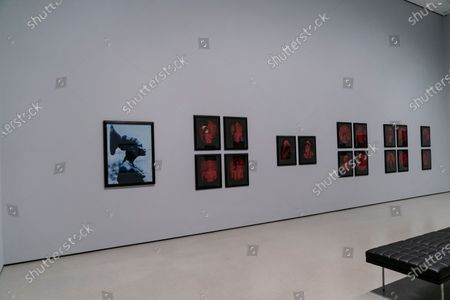 Editorial picture of Press preview of The MoMA's first ever Fall Reveal, New York, United States - 13 Nov 2020