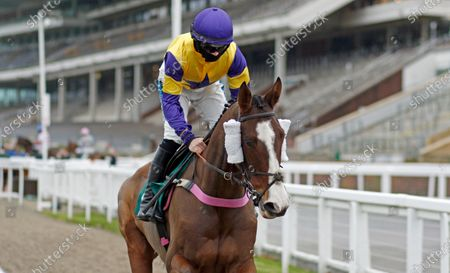 STORM CONTROL (Richard Patrick) winner of The South West Syndicate Handicap Chase Cheltenham