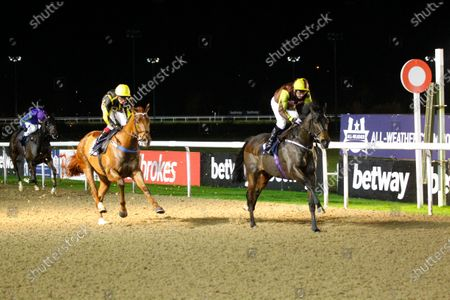 Stock Picture of Kingson and Tony Hamilton win the Heed Your Hunch At Betway Handicap at Wolverhampton from Camacho Man.