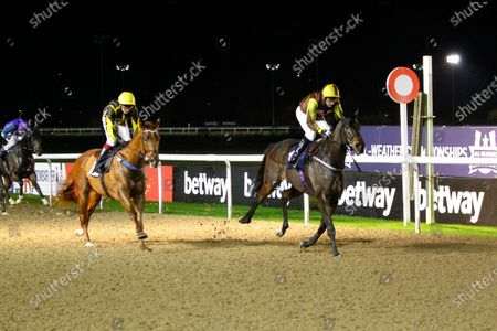 Stock Image of Kingson and Tony Hamilton win the Heed Your Hunch At Betway Handicap at Wolverhampton from Camacho Man.