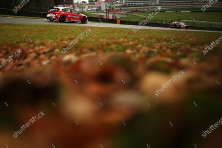 BRANDS HATCH, UNITED KINGDOM - NOVEMBER 14: Andy Neate (GBR) - Motorbase Performance Ford Focus during the Brands Hatch GP at Brands Hatch on November 14, 2020 in Brands Hatch, United Kingdom. (Photo by JEP / LAT Images)