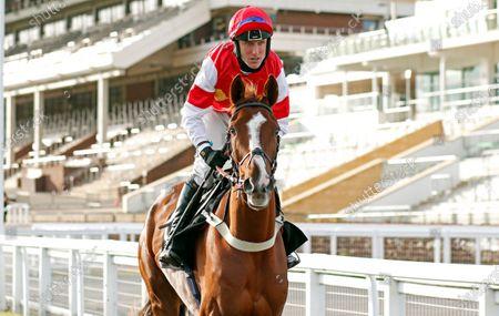 THE BIG BREAKAWAY (Robbie Power) winner of The mallardjewellers.com Novices Chase Cheltenham