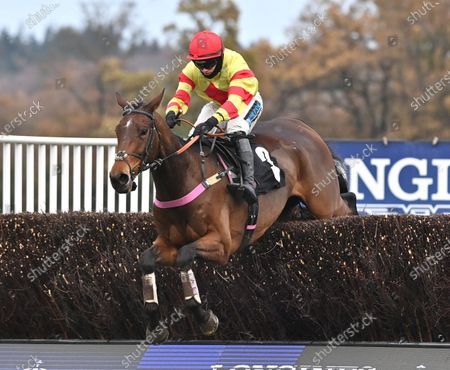 """Demachine (Richard Patrick) takes the last before going on to win The Play The Coral """"Racing Super Series"""" Novices Limited Handicap Steeple Chase. Photo © Hugh Routledge."""