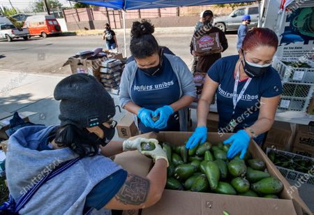 Editorial photo of Free food event for those in need, Humphrey Park, Pacoima, California, United States - 12 Nov 2020