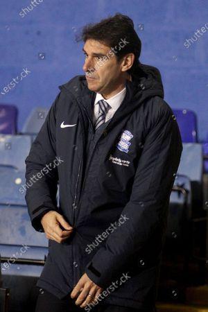 PORTRAIT Birmingham City Manager Aitor Karanka  during the EFL Sky Bet Championship match between Coventry City and Birmingham City at the Trillion Trophy Stadium, Birmingham