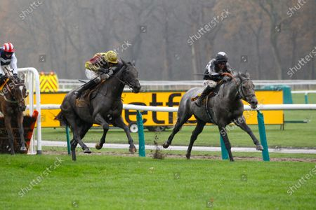 Stock Photo of War Lord and Robbie Power [grey horse] win the Betfair Racing Only Bettor Handicap Hurdle at Haydock from Umbrigado.