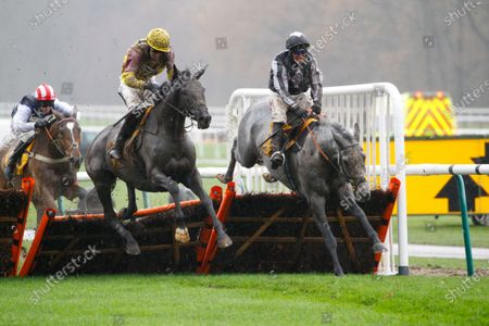 Stock Picture of War Lord and Robbie Power [grey horse] win the Betfair Racing Only Bettor Handicap Hurdle at Haydock from Umbrigado.