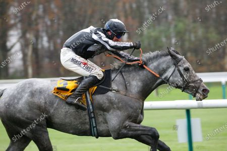 Editorial picture of Horse Racing - 21 Nov 2020