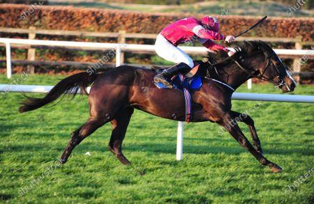 Editorial photo of Horse Racing - 22 Nov 2020