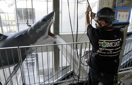 """Editorial image of """"Jaws"""" Installation at The Academy Museum of Motion Pictures, Los Angeles, United States - 20 Nov 2020"""
