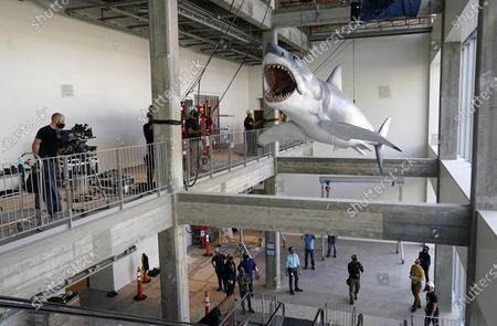 """Stock Image of Fiberglass replica of Bruce, the shark featured in Steven Spielberg's classic 1975 film """"Jaws,"""" is lifted into a suspended position for display at the new Academy of Museum of Motion Pictures, in Los Angeles. The museum celebrating the art and science of movies is scheduled to open on April 30, 2021"""