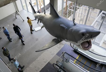 """Editorial picture of """"Jaws"""" Installation at The Academy Museum of Motion Pictures, Los Angeles, United States - 20 Nov 2020"""