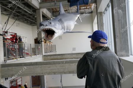 """Man looks at a fiberglass replica of Bruce, the shark featured in Steven Spielberg's classic 1975 film """"Jaws,"""" after it was raised into a suspended position for display at the new Academy of Museum of Motion Pictures, in Los Angeles. The museum celebrating the art and science of movies is scheduled to open on April 30, 2021"""