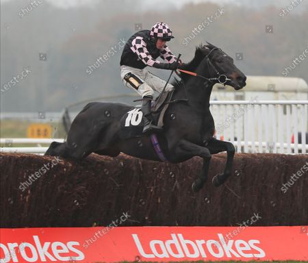 Editorial picture of Horse Racing from Newbury Racecourse, UK - 28 Nov 2020