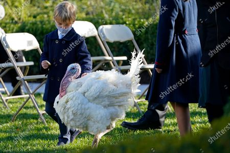 Theodore Kushner, son of Ivanka Trump, Assistant to the President, and White House adviser Jared Kushner, walks with Corn, the national Thanksgiving turkey, in the Rose Garden of the White House, in Washington. President Donald Trump pardoned Corn during the event