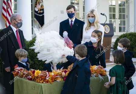Ivanka Trump, President Donald Trump's daughter, and her husband Jarred Kushner joined by their children and other guests greet Corn, the National Thanksgiving Turkey, after President Trump pardoned the bird in the Rose Garden at the White House.
