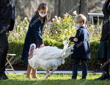 The children of Ivanka Trump and Jared Kushner, Arabella and Theodore, greet Corn, the National Thanksgiving Turkey, before President Trump pardoned the bird, at the White House.