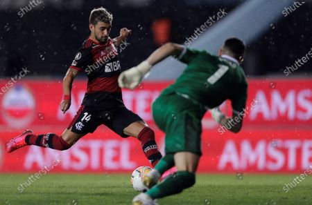 Giorgian De Arrascaeta (L) of Flamengo kicks the ball before the gaze of goalkeeper Gabriel Arias (R) of Racing during the Copa Libertadores match between Racing of Argentina and Brazilian Flamengo, at the Presidente Peron stadium, in the city of Avellaneda, in the province of Buenos Aires, Argentina, 24 November 2020.