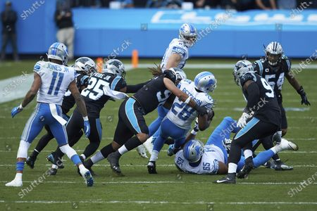 Stock Photo of Detroit Lions running back Adrian Peterson (28) is tackled by Carolina Panthers defensive end Austin Larkin (96) during an NFL football game, in Charlotte, N.C
