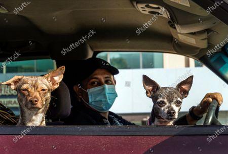Editorial image of Virus Outbreak California, Los Angeles, United States - 26 Nov 2020