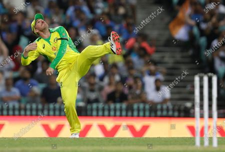 Australia's Aaron Finch celebrates after taking a catch to dismiss India's Virat Kohli during the one day international cricket match between India and Australia at the Sydney Cricket Ground in Sydney, Australia