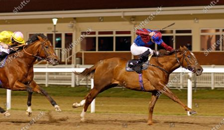 Stock Photo of AHLAWI (James Doyle) wins The Racing Welfare Novice Stakes Chelmsford