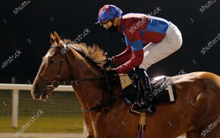 AHLAWI (James Doyle) winner of The Racing Welfare Novice Stakes Chelmsford