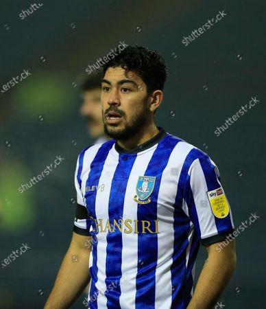 Massimo Luongo #21 of Sheffield Wednesday