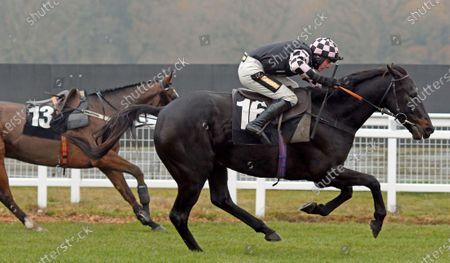 Editorial photo of Horse Racing - 28 Nov 2020