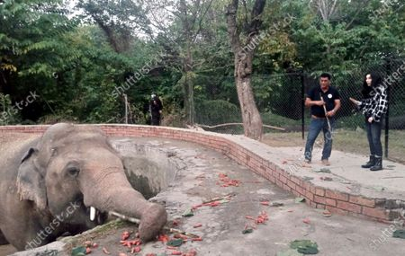 American Iconic singer and actress Cher (R) visits the elephant named 'Kaavan' at Maragzar zoo in Islamabad, Pakistan, 28 November 2020. Music icon singer and actress Cher arrived in Pakistan on Friday 27 November to celebrate the departure of Kaavan, dubbed the 'world's loneliest elephant,' who will soon leave a Pakistani zoo for better conditions after years of lobbying by animal rights groups and activists.