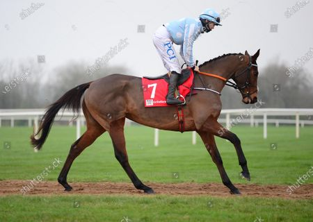 FAIRYHOUSE 29-November-2020. The Baroneracing.com Hatton's Grace Hurdle (Grade 1) HONEYSUCKLE and Rachael Blackmore head to the start to win for owner Kenneth Alexander and trainer Henry de Bromhead. Healy Racing