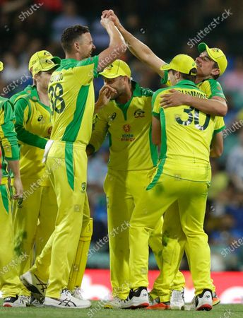 Australia's Moises Henriques, right, is congratulated by teammate Josh Hazlewood, left, after taking a catch to dismiss India's Virat Kohli during the one day international cricket match between India and Australia at the Sydney Cricket Ground in Sydney, Australia