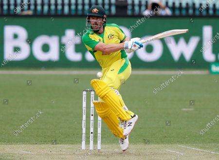 Australia's Aaron Finch reacts as he is hit while batting during the one day international cricket match between India and Australia at the Sydney Cricket Ground in Sydney, Australia