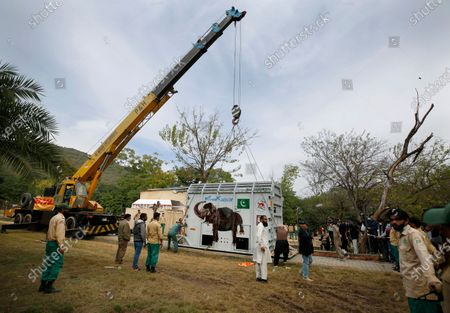 Stock Picture of Pakistani wildlife workers and experts from the international animal welfare organization Four Paws, use a crane to move a crate carrying an elephant named Kaavan before transporting him to a sanctuary in Cambodia, at the Marghazar Zoo in Islamabad, Pakistan, . Kavaan, the world's loneliest elephant, who became a cause celebre in part because America's iconic singer and actress Cher joined the battle to save him from his desperate conditions at the zoo