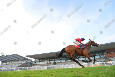 """Stock Picture of FAIRYHOUSE 29-November-2020. The Baroneracing.com Drinmore Novice Chase (Grade 1) """"Alone all Alone"""". ENVOI ALLEN and Jack Kennedy easy winners for owner Cheveley Park Stud and trainer Gordon Elliott. Healy Racing"""