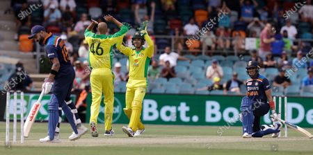 Australia's Ashton Agar, second left, celebrates with teammate Alex Carey after dismissing India's Shubman Gill, right, LBW for 33 runs as India's Virat Kohli turns away during their one day international cricket match at Manuka Oval in Canberra, Australia