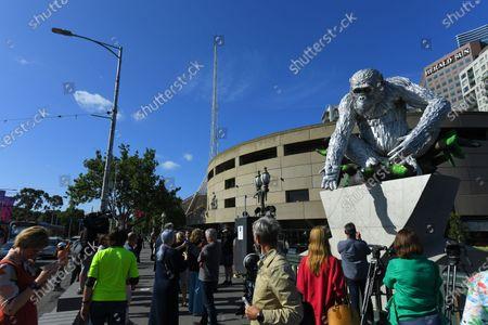 Editorial photo of Sculpture of chimpanzee David Greybeard, Melbourne, Australia - 03 Dec 2020