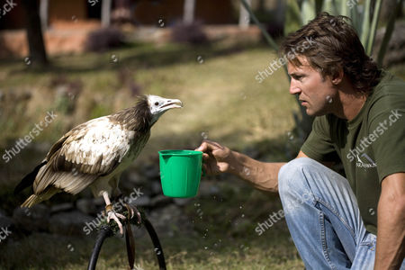 Scott Mason feeding an Egyptian vulture