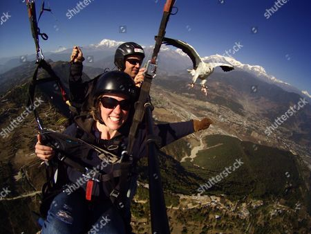 Scott Mason (behind) and a tourist flying with an Egyptian vulture during the 'para-hawking' experience he offers