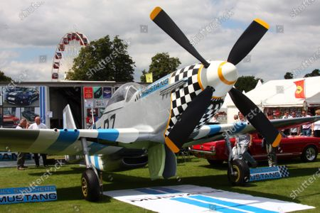 Goodwood Estate, West Sussex. 30th June - 3rd July 2011 Bill Shepherd three quarter scale P-51D Mustang replica. Atmosphere. World Copyright: Lord Hutton/LAT Photographic