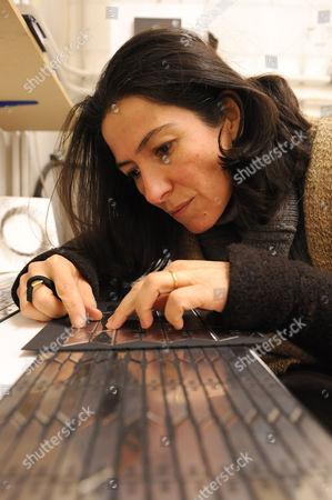 Stock Picture of Mariana Heilmann