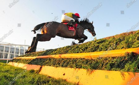 PUNCHESTOWN HOKE COLBURN and Philip Enright win the Barry Geraghty Autobiography True Colours Handicap Steeplechase. Healy Racing