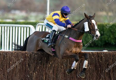 Storm Control (Richard Patrick) jumps the last fence and wins the 3m 2f handicap chaseCheltenham 11.12.20 Pic: Edward Whitaker, supplied by Hugh Routledge.