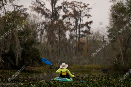 Kayaker paddles amidst changing foliage in the Maurepas Swamp in Ruddock, La., . Located about 35 miles West of New Orleans, between Lake Pontchartrain and Lake Maurepas, the swamp takes on a different hue as autumn changes to winter, with much of the foliage temporarily decaying, but still retains its unique beauty and tranquility