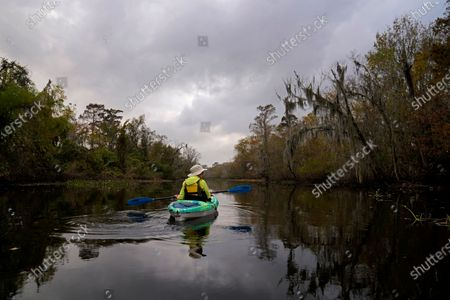 The photographer's wife paddles a kayak in the Maurepas Swamp in Ruddock, La., . Located about 35 miles (56 kilometers) west of New Orleans, between Lake Pontchartrain and Lake Maurepas, the swamp takes on a different hue as autumn changes to winter, with much of the foliage temporarily decaying, but still retains its unique beauty and tranquility